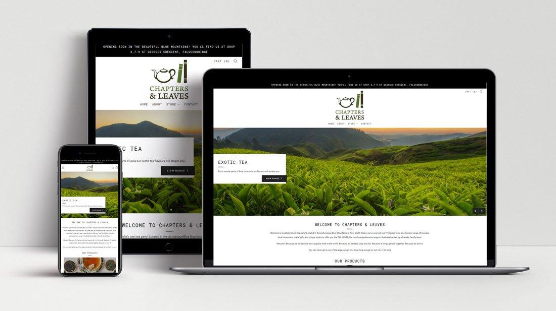 Shopify Web Development